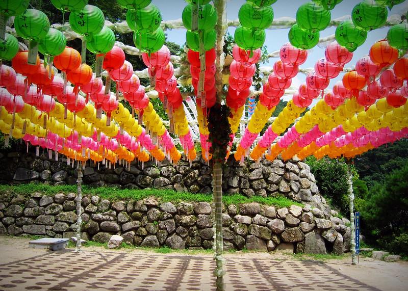Buddhas's Garden / Buddha Udvara
