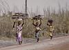Three Women, Carrying Firewood, near Tamale, Ghana