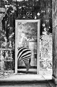 Behind the Door II