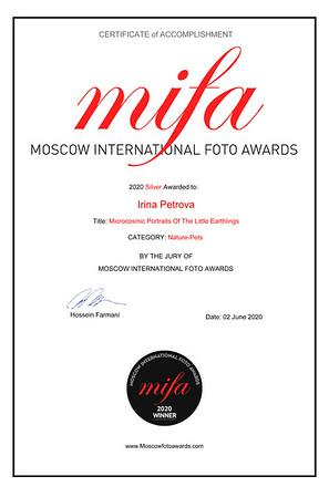 MIFA Winner Cert