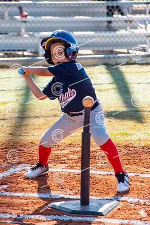 Acreage Baseball 2019 Spring Season