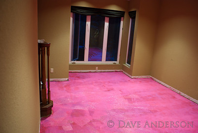 "I'm going to fire my interior designer....   Just kidding. :)  Today I sealed the slab in what will become our office.  The sealant is RedGard, which looks like Pepto-Bismol going on but dries to a dark red.  The green will be replaced with an off-white, ""Sand Dollar"".   I just thought the Pepto-and-green combo was so putrid I had to take a picture. :)    After another coat of this, a layer of visqueen will go down followed by the floating plywood subfloor. asphalt felt to minimize squeaks, then hardwood."