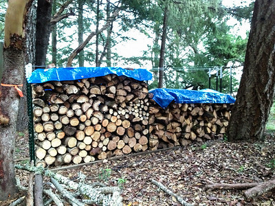"""After"" -- My neighbor brought his splitter over this weeekend and we processed all of the split wood on this side. This all has to wait till next year before burning."