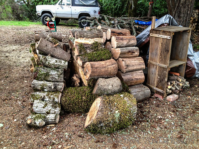 """Before"" -- I cut and hauled these rounds up to the house last weekend. Back row and largest piece in front are all madrone, top two pieces up front are unidentified and the rest is oak."