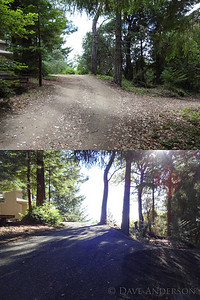 Area around house before & after tree/brush clearing. Also shown, grading work on driveway. It's not obvious here, but the driveway was a severe off-camber that was treacherous when wet. Even in my 4x4 it was always a bit dicey trying not to slide into an oak when heading downhill.