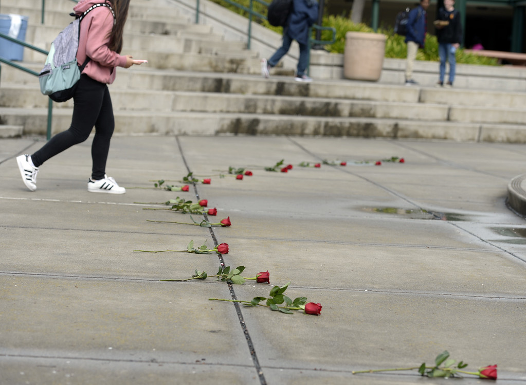 . In addition to walking out of class during the National School Walkout, students at Green Valley Middle School in Fairfield placed 17 red roses in the quad on campus to honor the memory of the 17 people killed in Parkland, Florida last month. Joel Rosenbaum -- The Reporter