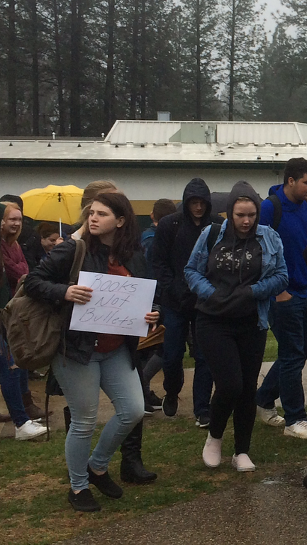. Paradise High students walk out of their classrooms Wednesday, March 14, 2018, in Paradise, California, as part of the nationwide protests against school shootings and the inaction of lawmakers to quell the violence. (Sarah Brandt -- Paradise Post)