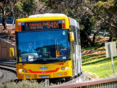 Bus11 (1)