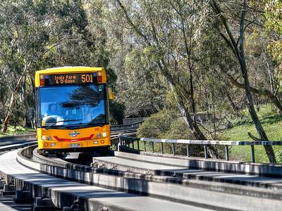 Bus9 (1)