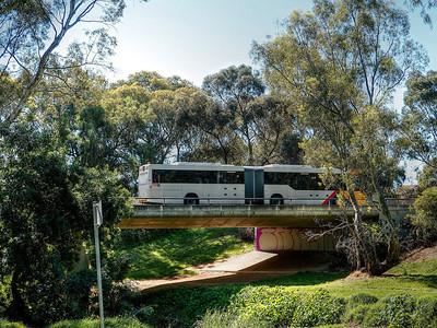 Bus7 (1)