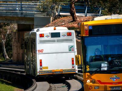 Bus6 (1)