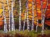 Aspen Colours 12x16