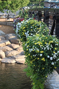 Flowers over the Truckee River in Downtown Reno
