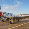 """P51-D """"Boo Man Choo"""" at the Wings Over Houston Airshow, held October 26-27, 2013."""