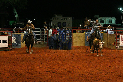 G2 cattle drive 2008 (23)