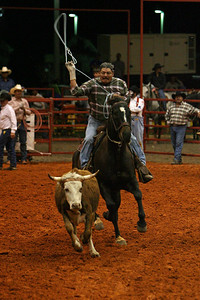 G2 cattle drive 2008 (11)