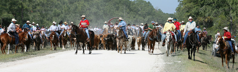 G2 cattle drive 2008 (2)