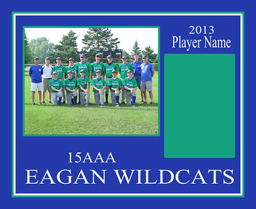15aaa player template