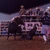 Dalton Rodeo-133