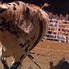 Dalton Rodeo-94