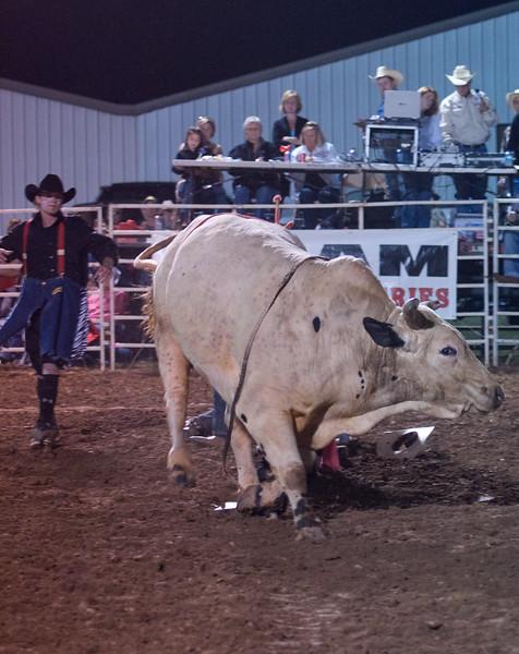 Dalton Rodeo-109