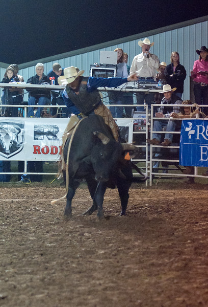 Dalton Rodeo-98