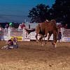 Dalton Rodeo-22