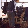 Dalton Rodeo-50
