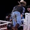 Dalton Rodeo-120