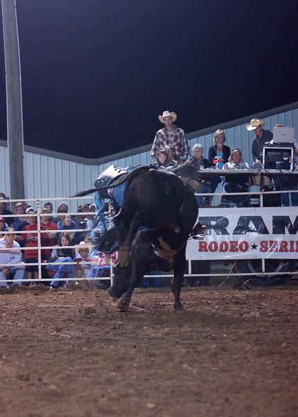 Dalton Rodeo-132