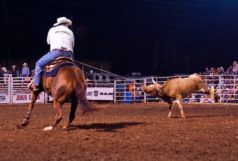 Dalton Rodeo-81