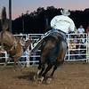 Dalton Rodeo-23
