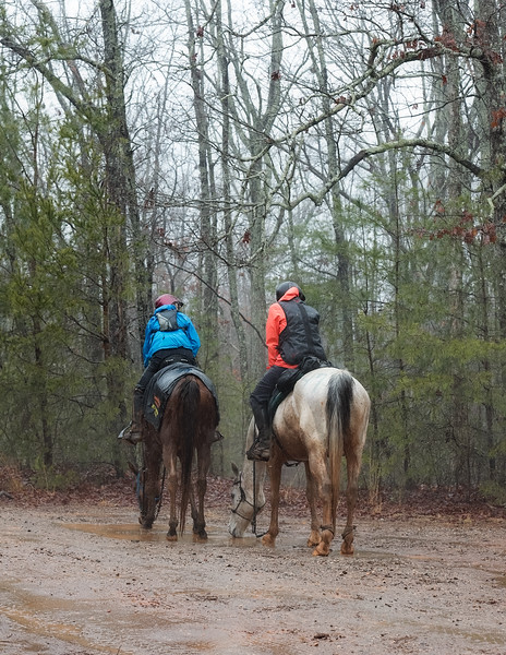 2018-Hot-to-Trot-127