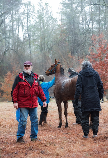 2018-Hot-to-Trot-161