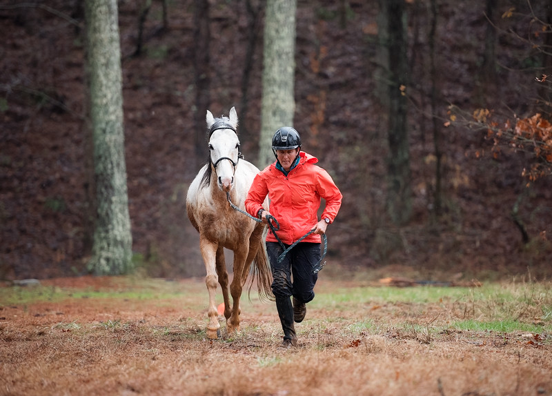 2018-Hot-to-Trot-150