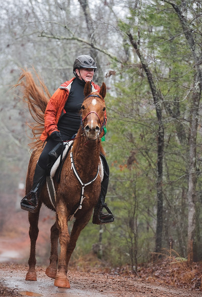 2018-Hot-to-Trot-54