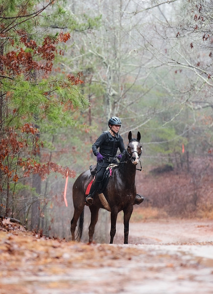 2018-Hot-to-Trot-95