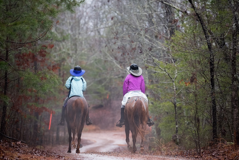 2018-Hot-to-Trot-133