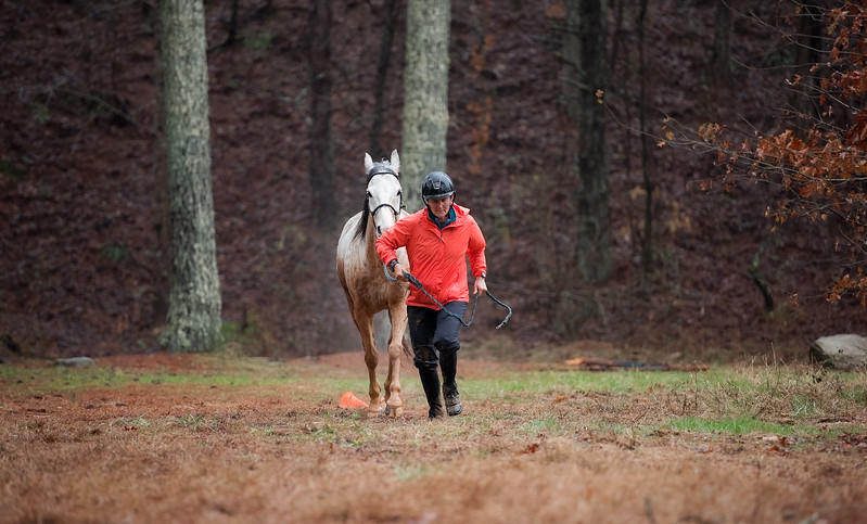 2018-Hot-to-Trot-149
