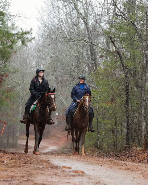 2018-Hot-to-Trot-41