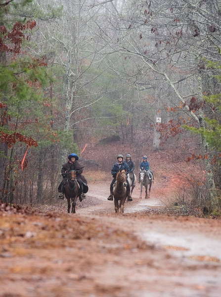 2018-Hot-to-Trot-28