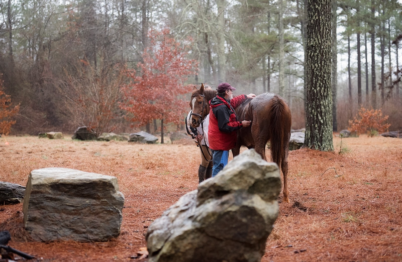 2018-Hot-to-Trot-157