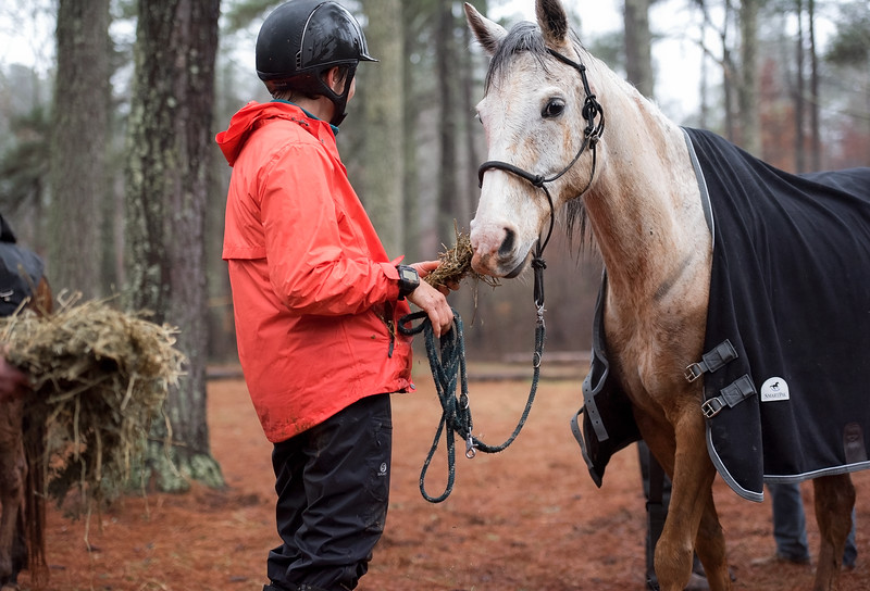 2018-Hot-to-Trot-158