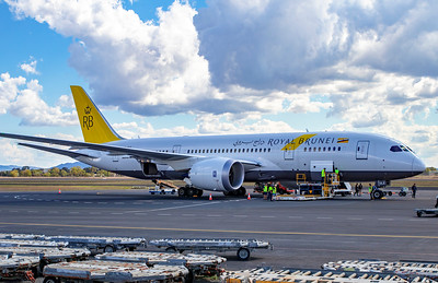 Exercise Wallaby 2018 - Boeing 787-8 Dreamliner