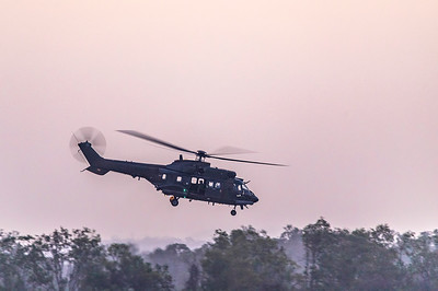Exercise Wallaby 2019 - Republic of Singapore Air Force AS332M Super Pumas