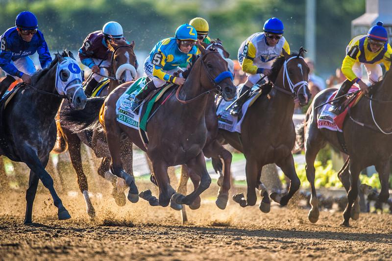 American Pharoah riden by jockey Victor Espinoza winning the Triple Crown at Belmont on June 6, 2015