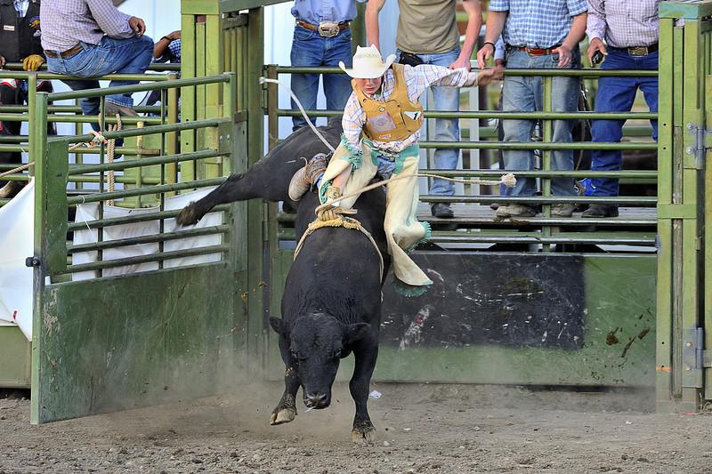 Young Bull Rider, Hamilton, Montana Rodeo