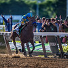 American Pharoah riden by jockey Victor Espinoza crossing the finish line to win the Triple Crown at Belmont on June 6, 2015