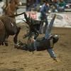 Flying off the bull, Valentine, Nebraska