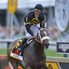 Jockey Gary Stevens Crossing the Finish Line, 2013 Preakness